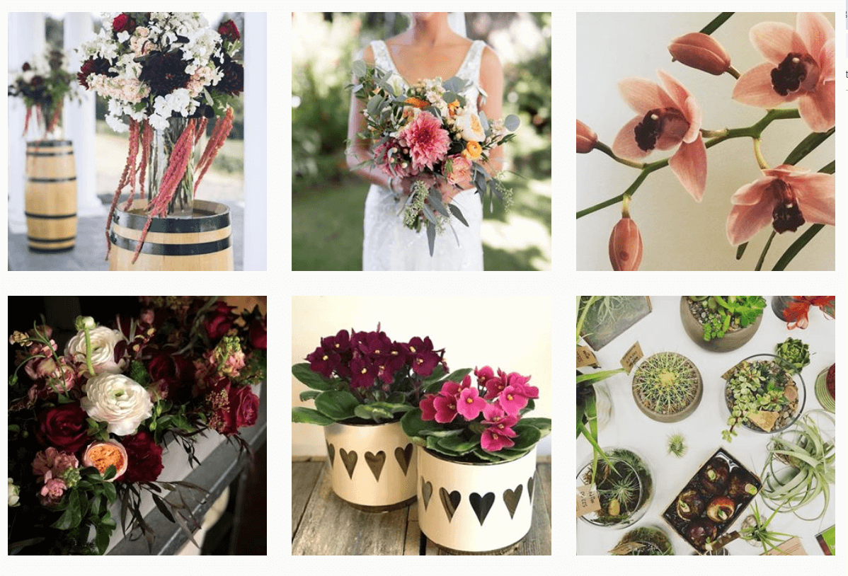 Marketing ideas for flower shops. Botanica instagram pictures.