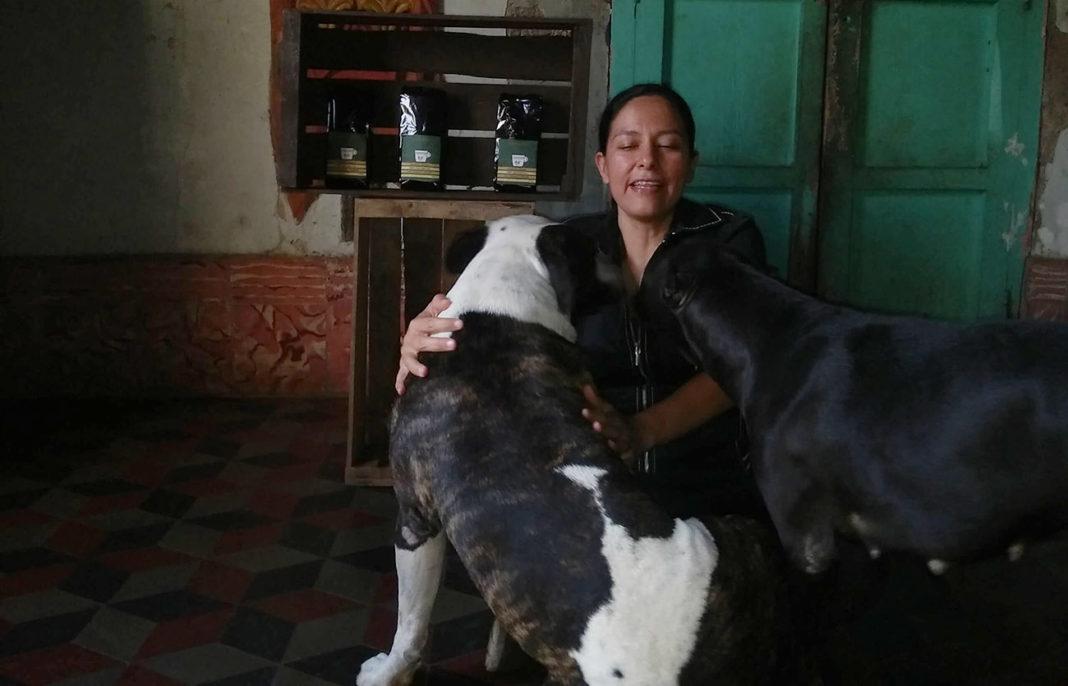 Plan de Digitalización El Salvador. Coffee Dog, Vanessa con sus perros.