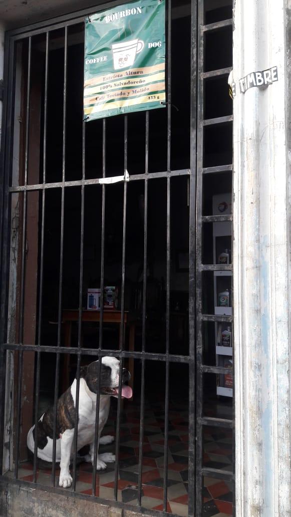 Plan de Digitalización El Salvador. Coffee Dog, entrada de la cafetería.