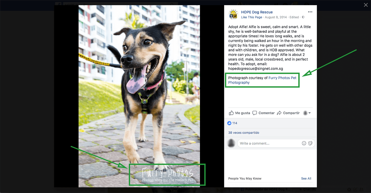 Marketing For Photographers Facebook Collaboration Example