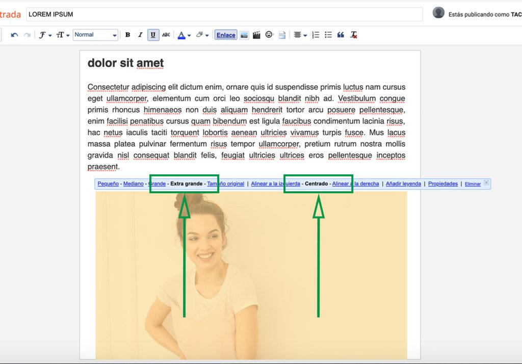 Cómo crear un Blog en Blogger. Herramientas para modificar imagen