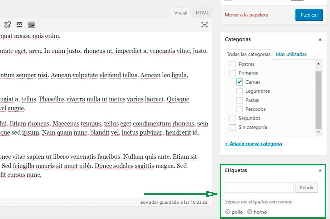 Cómo usar WordPress para crear una página web. Ejemplo de etiquetas.
