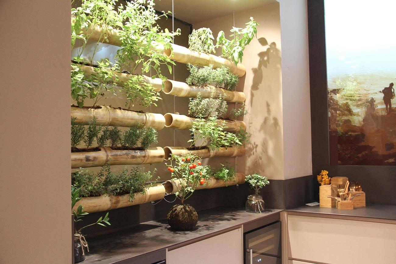GrunGarten. Plantas en interior.
