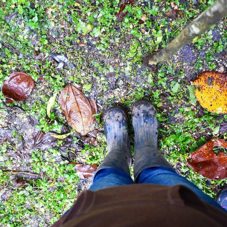 TRC Viajes. Paseo en la naturaleza.